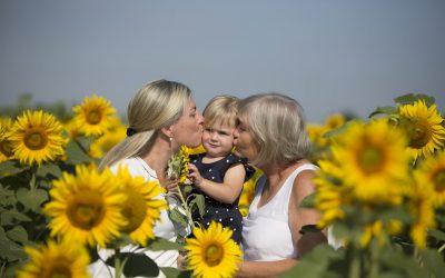 Focení ve slunečnicích